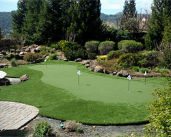 Pleasanton Putting Green