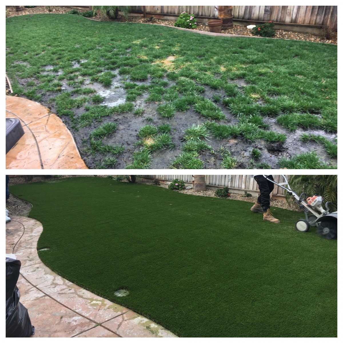 Backyard Before And After discovery bay, ca - backyard synthetic grass before & after